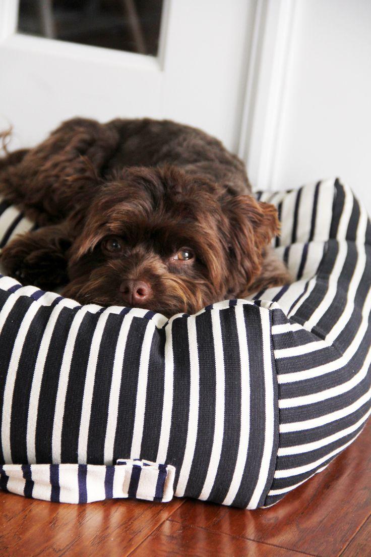 Rubber mats dog run - Fabric Shops You Oughta Know