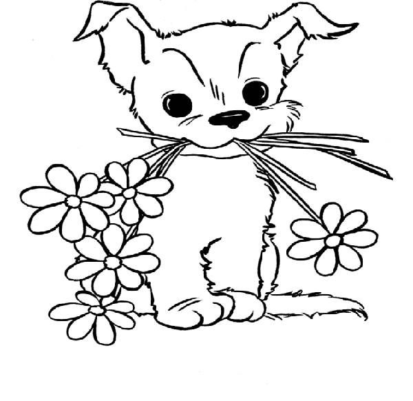 Cute Puppy Coloring Pages For Girls   Craftcrack   Pinterest