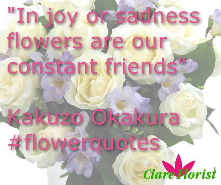 23 best Flower Quotes images on Pinterest | Floral quotes, Flower ...