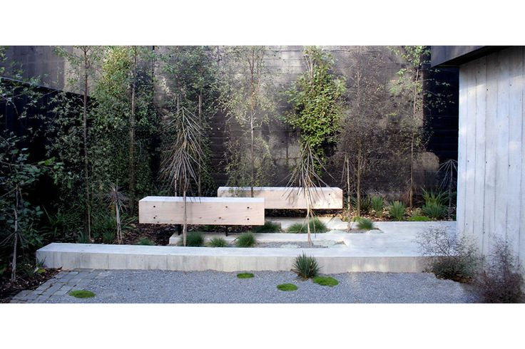 Bespoke timber bench seats with steel fin legs and lighting concealed beneath in acid etched concrete paving. New Zealand native trees and shrubs create an urban sanctuary in this small site. Off form concrete walls of the house and black stained timber fencing contain the site and compliment the landscape materials.