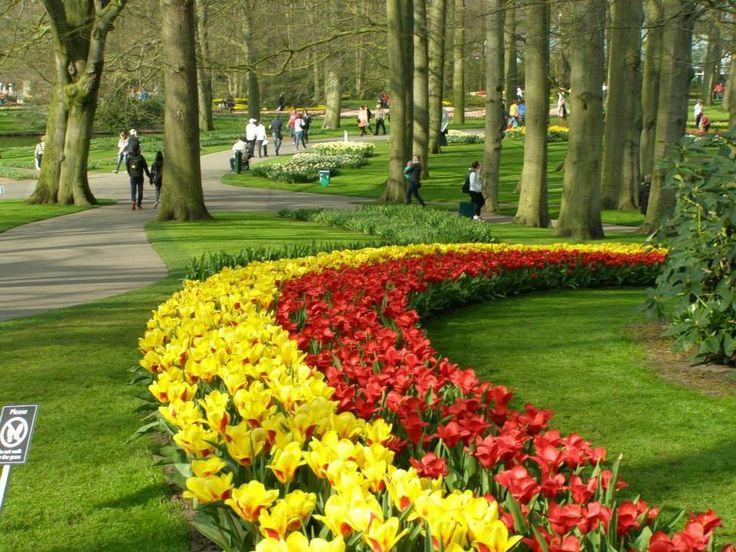 Keukenhof, a csodálatos holland virágpark https://www.facebook.com/FioriartCreations