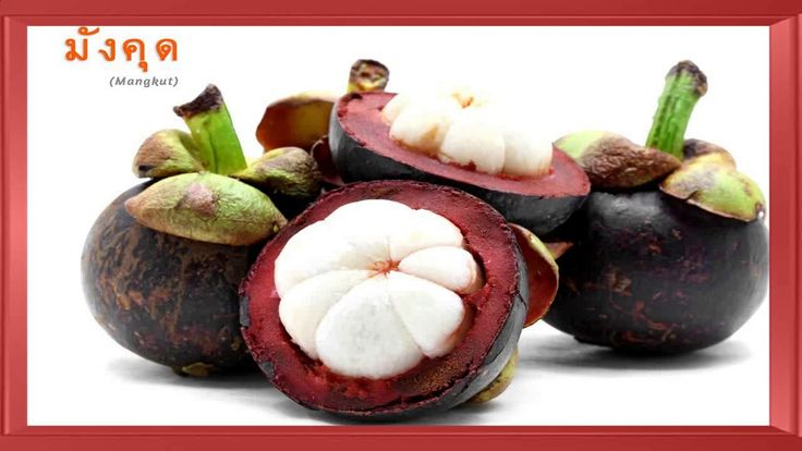 Los Beneficios De Consumir  Mangostan  Combate Los Hongos Virus E Infecciones https://youtu.be/gVZxUFc50WM
