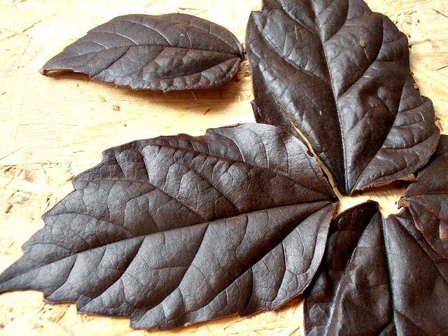 Cum se fac frunzele din ciocolata pentru tort? | CAIETUL CU RETETE