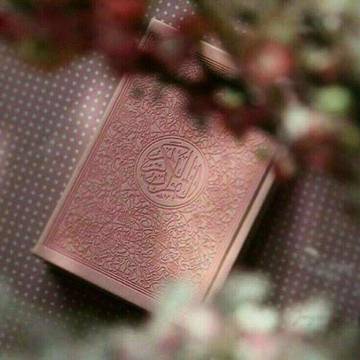 Pin By Rcky Mark3 On Quran Kitabi Quran Book Islam Quran Quran Karim