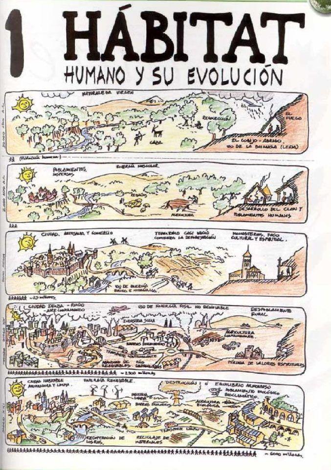 Permacultura: hábitat humano y su evolución