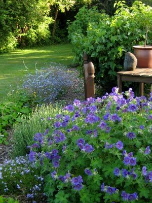 Containers in the Garden