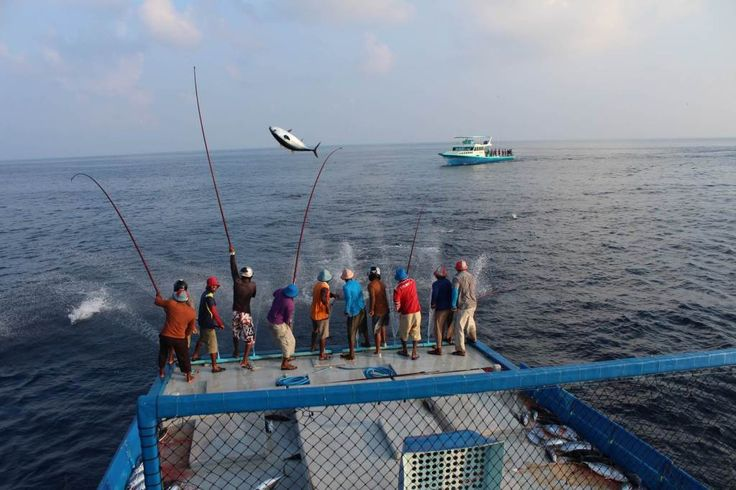 Maldives fishermen
