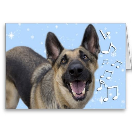 13 best german shepherd christmas cards images on pinterest german discover amazing german shepherd cards with zazzle invitations greeting cards photo cards in thousands of designs themes m4hsunfo