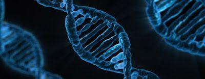 Marco La Rosa - il sito di ricerca: PADRI E FIGLI: C'E' QUALCOSA DI PIU' OLTRE AL DNA ...
