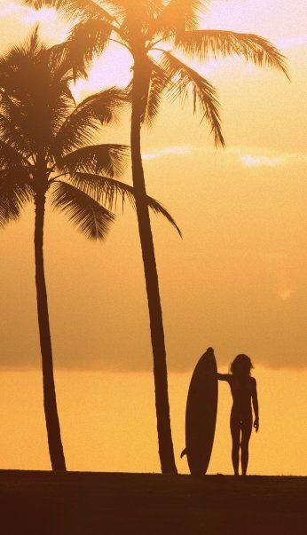surf #sunset