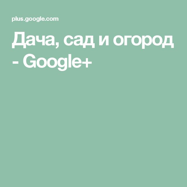 Дача, сад и огород - Google+