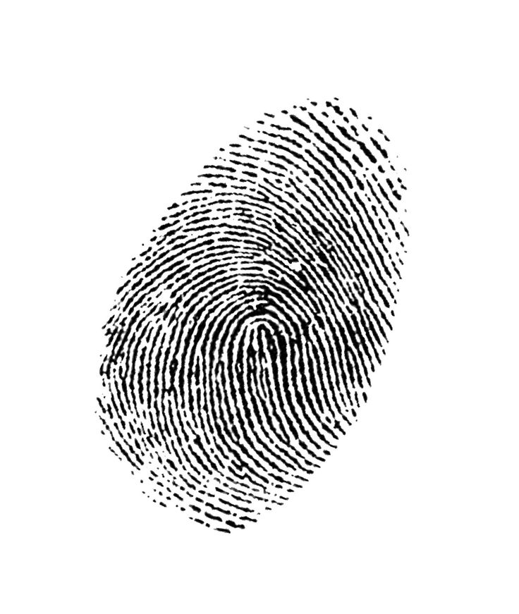 fingerprint - Google Search