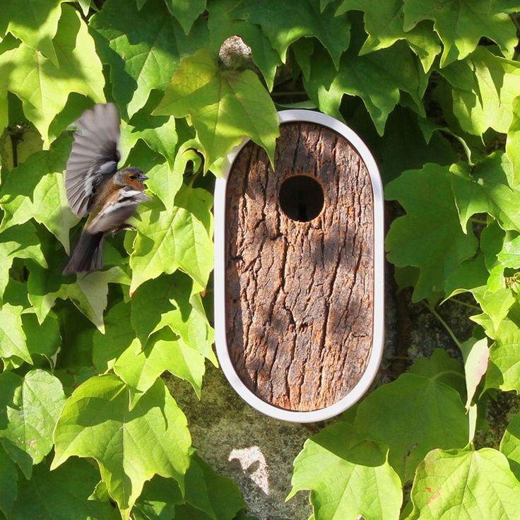 Casita Pájaro Hole Inn ER