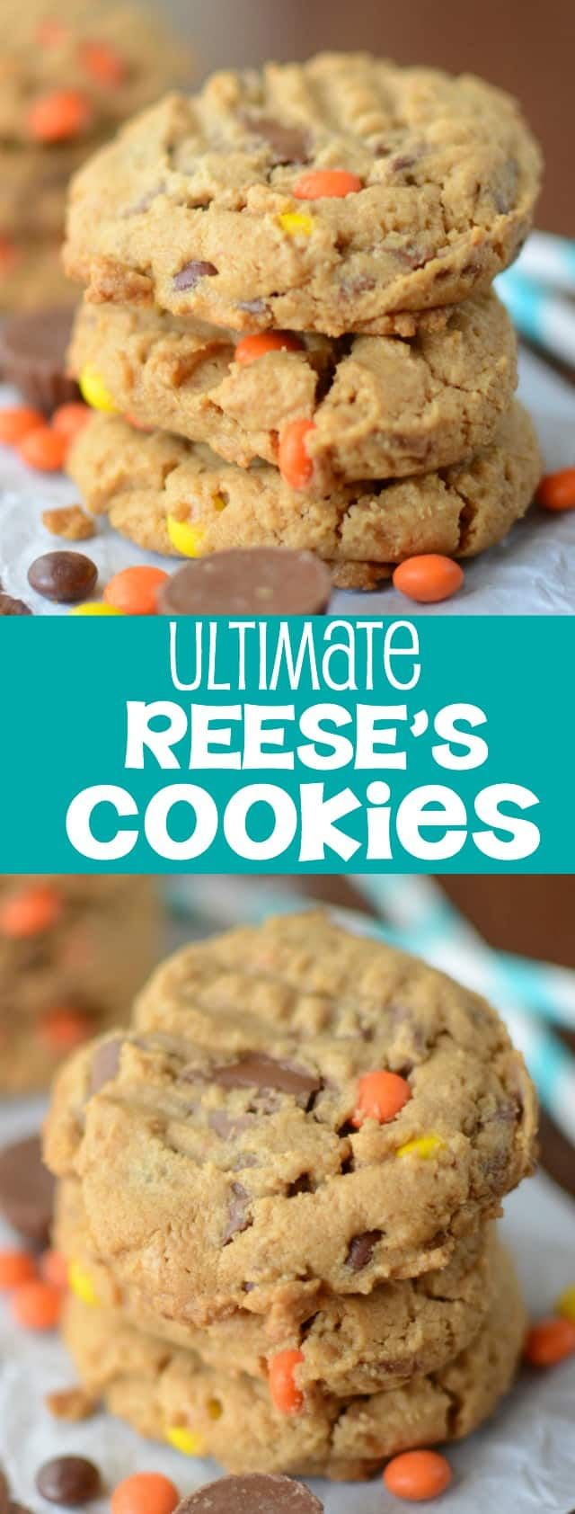The ULTIMATE Reese's Cookies - easy peanut butter cookies FILLED with tons of Reese's peanut butter cups and Reese's Pieces! AND they're accidentally gluten-free!