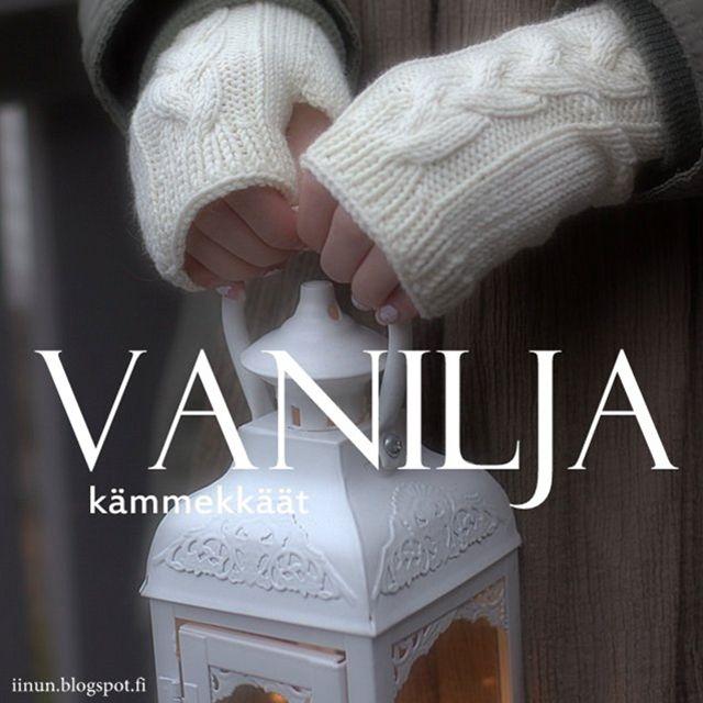Ohje: Vanilja- kämmekkäät