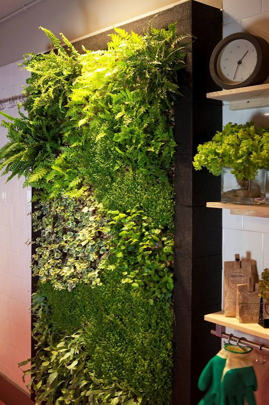 jardin vertical en la terraza con fondo de maderas naturales