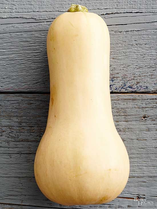 Butternut squash, a common winter squash, starts appearing in markets in the fall.