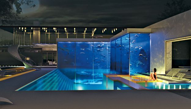 Incredible aquarium fish tank and swimming pool for Home piscine