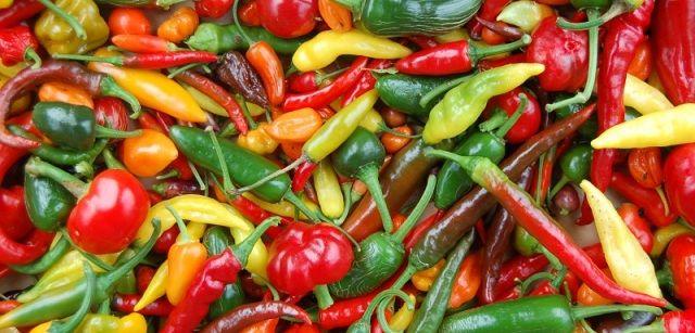 Guide til chili og styrkeskala over chili