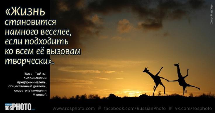 #nature #photography #animals #aphorisms