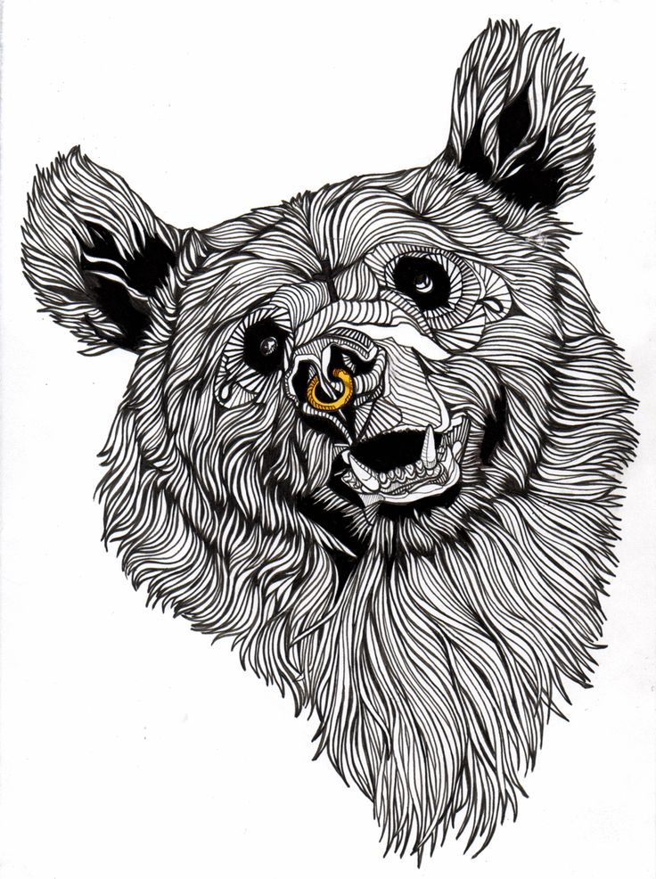 Bear line art. This drawing has lots of lines for the fur ... Bear Face Drawing