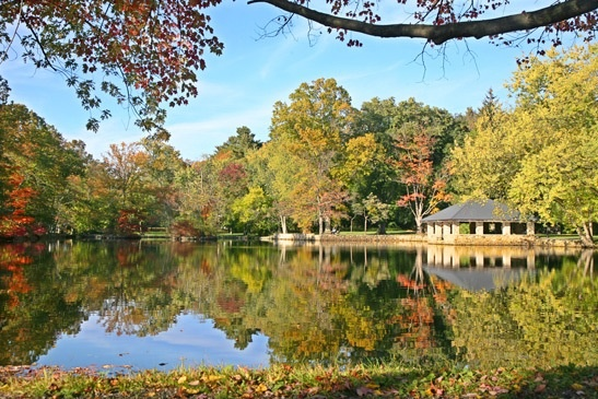 Tilley pond Downtown Darien Darien ct