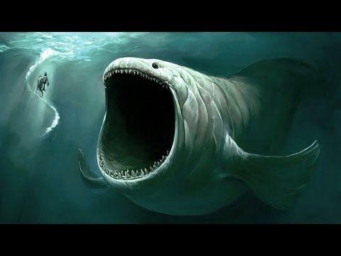 Los 5 Monstruos Marinos Más Grandes del Mundo - YouTube