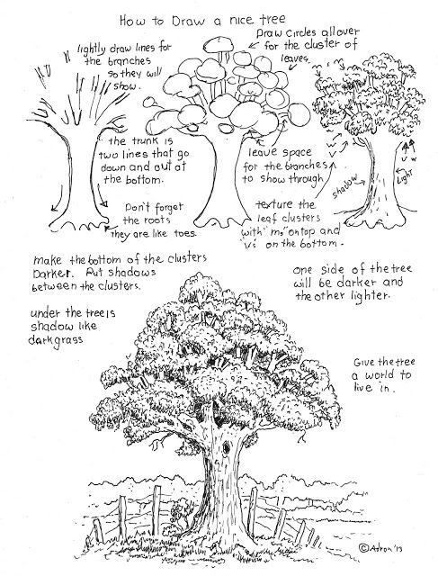 How to Draw Worksheets for Young Artist: How To Draw A Nice Tree Worksheet drawing lesson