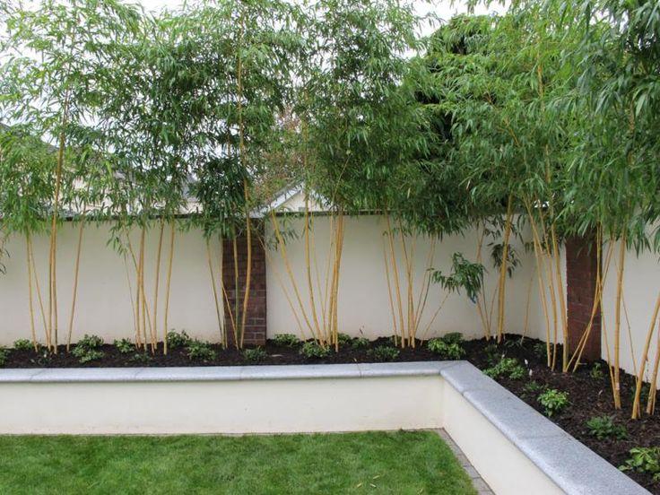 rendered walls for gardens - Bing Images | Outdoor ...