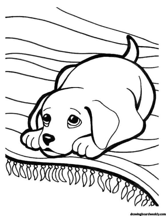 Coloring Page Puppies Hd Puppy Coloring Pages Dog Coloring Page Animal Coloring Pages