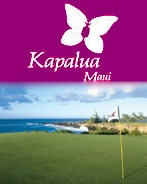Kapalua Golf Course - Maui.  The most beautiful place to golf . . . or to just ride in the cart!!