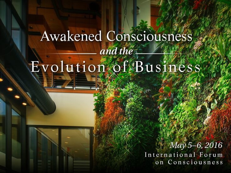 nike sustainable business & innovation lab