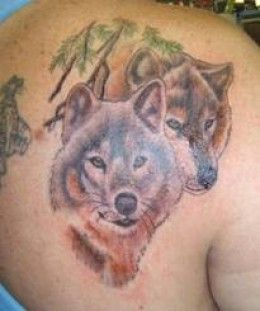 Wolf Tattoos: Designs, Ideas, and Meanings