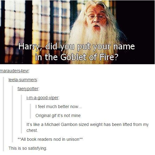 *calmly* Did you put your name in the Goblet of Fire? by kutbock