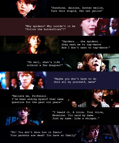 Ron through the years...  He hasn't gotten much more smarter ;)