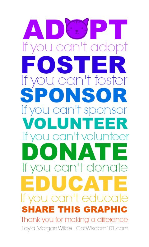Love this! Great graphic from @catwisdom101 :) #adopt #foster #sponsor #volunteer #donate #educate to help animals!