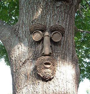 Tree faces add a fun, yet mysterious feeling to any yard.