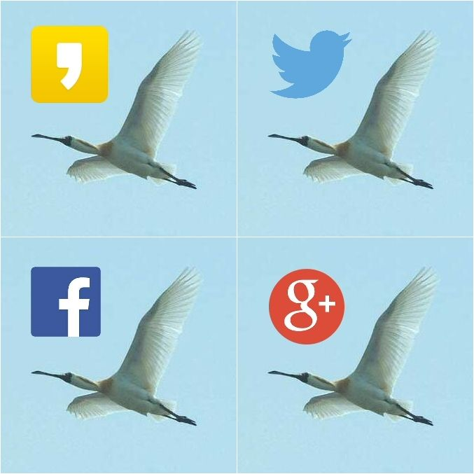 Misiryeong Online Social Networks * Comments or Questions? Email us at: misiryeong@hanmail.net   미시령 온라인 네트워크