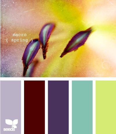 macro spring: Colors Combos, Design Seeds, Macros Spring, Bedrooms Colors Pallette, Spring Colors, Colors Palettes, Colors Schemes, Purple Teal, Colour Palettes