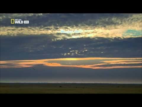 A Duna, Európa gyöngyszeme 2.rész ᴴᴰ - YouTube