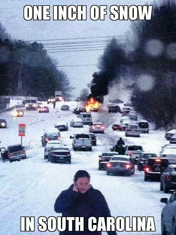 Funny pics - 1 inch of snow in South Carolina