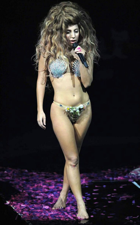 Lady Gaga Artpop Tour Look Costume