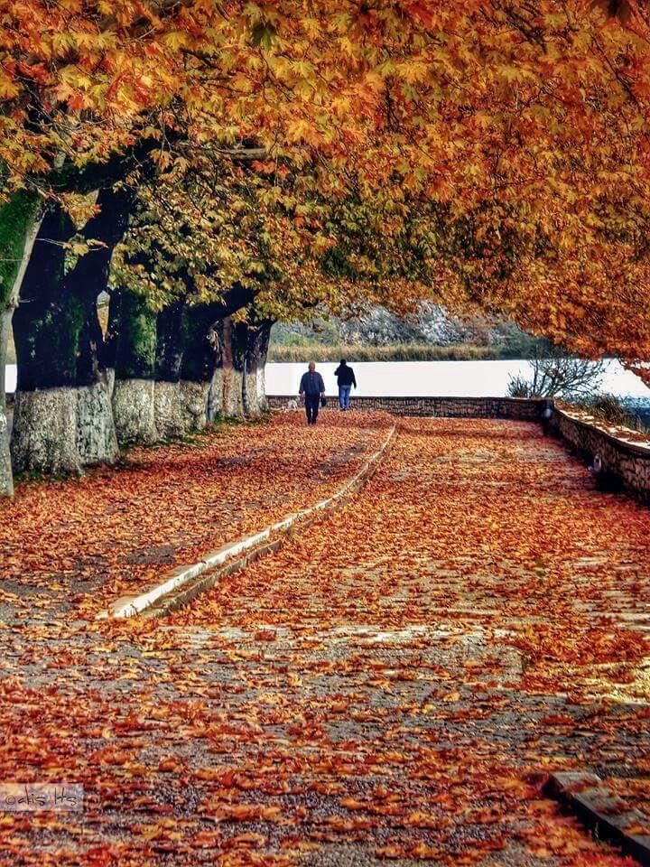 Ioannina. Autumn. Perfect autumn colors. Ioannina lake. Greece.
