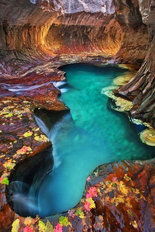 Emerald Pool at Subway Zion National Park, Utah;