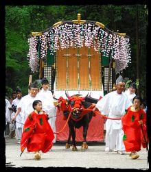 May 15 Aoi Matsuri, Kyoto | The Aoi Masturi's main attraction is a large parade of over 500 people dressed in the aristocratic style of the Heian Period (794-1185) that leads from the Kyoto Imperial Palace to the Kamo Shrines, the festival's host shrines.