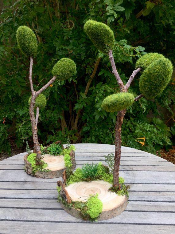 Gnome Garden: 9612 Best Fairy Garden Images On Pinterest