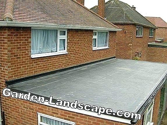 Flat Roof Replacement Cost Per Square Foot In 2020 Flat Roof Replacement Roof Replacement Cost Flat Roof Repair