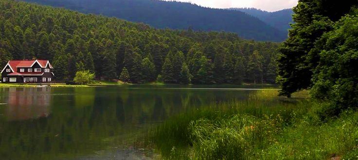 Abant Tertemiz Havası ve Doğası ile Unutulmayacak Bir Tatil İçin Sizleri Bekliyor. www.abantotel.com.tr  #abantotel #abantotelleri #abantbalayıotel #abant #abantgölü #tatilhome