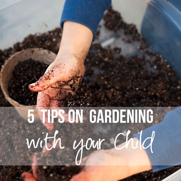 plant a garden with kids