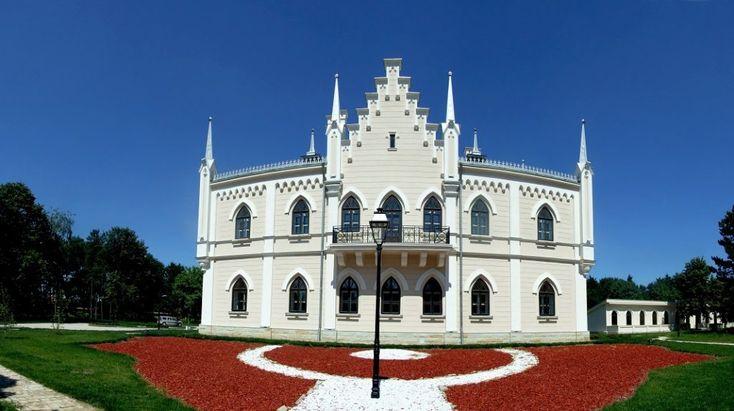 palatul-cuza-ruginoasa_20723952